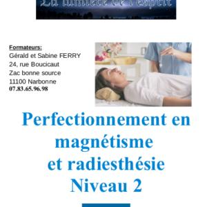 book niveau 2 magnetisme
