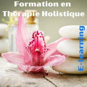 Formation Thérapie Holistique, Magnétisme, Radiesthésie ... (E-learning))